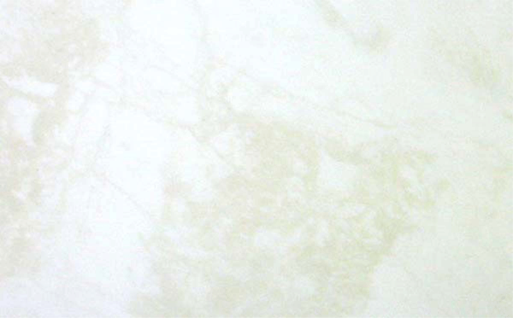 Marmol en extremadura marmol en miajadas for Textura de marmol blanco
